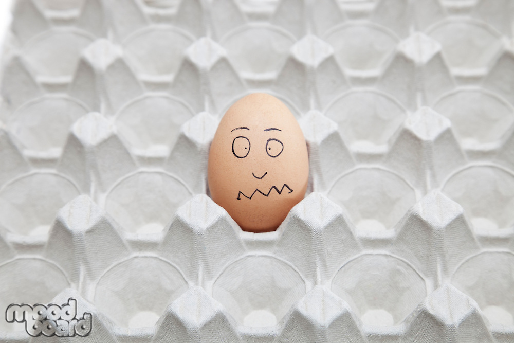 Anthropomorphic brown egg in empty carton