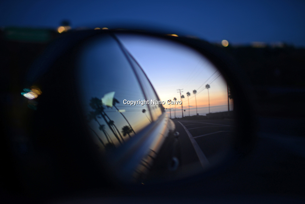 Palm trees reflected on car rearview mirror, Malibu, Los Angeles.