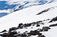 Melting snow revealing rocks on Mt. Rainier with ski tracks in the distance and two tiny mountaineers making their way up the slope in the upper left corner of the frame.  Mount Rainier National Park, Washington, United States