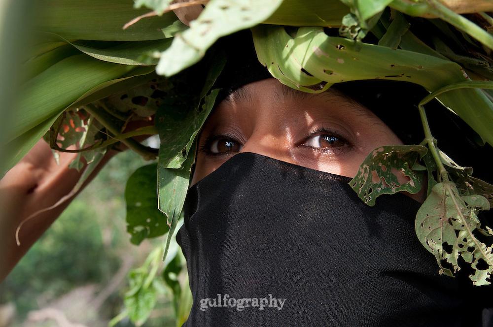 """Green"" by Amira Al Sharif.  A Yemeni Women,Fatom Ahmed, 30, collect grass in Haja'ah."