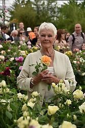 Dame Judi Dench at the RHS Chelsea Flower Show Press Day, Royal Hospital Chelsea, London England. 22 May 2017.<br /> Photo by Dominic O'Neill/SilverHub 0203 174 1069 sales@silverhubmedia.com