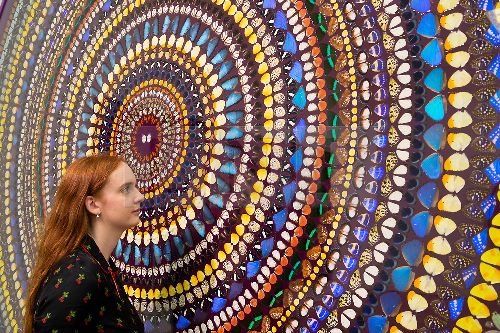© Licensed to London News Pictures. 19/09/2019. London, UK. A visitor views a painting titled Radial Balance (2019) by British artist Damien First. The work is part of a new exhibition titled Mandalas showing at the White Cube Gallery Mason's Yard. Photo credit: Ray Tang/LNP