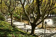 Alameda park, Santiago de Compostela, Galicia, Spain, 2017-10-10.