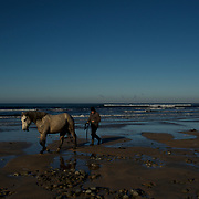DOONBEG, IRELAND - NOVEMBER 24, 2016: A local man exercises his horse at Doughmore Bay, a public beach neighbouring Trump International Golf Links and Hotel in Doonbeg, Ireland. Donald Trump's company in Ireland is involved in planning dispute over the construction of a 3kms wall along the public beach to protect the golf resort from erosion. CREDIT: Paulo Nunes dos Santos for The New York Times