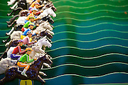 Carnival horse race game