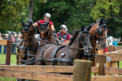 DodderGerkens Dirk, GER, Calle 97, Claus 65, Everytime Magic, Frederikus 4, Friedolin 38<br /> Driving European Championship <br /> Donaueschingen 2019<br /> © Hippo Foto - Dirk Caremans<br /> Gerkens Dirk, GER, Calle 97, Claus 65, Everytime Magic, Frederikus 4, Friedolin 38