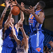 Westchester Knicks Forward Thanasis Antetokounmpo (43) grabs the rebound in the second half of a NBA D-league regular season basketball game between the Delaware 87ers and the Westchester Knicks  Saturday Dec, 26, 2015 at The Bob Carpenter Sports Convocation Center in Newark, DEL
