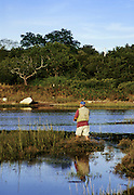 Man fishing, Mill Pond, Orleans, Cape Cod, MA..