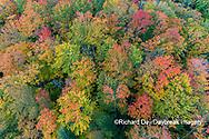 64776-02110 Aerial view of Hugoboom Lake in fall color Alger Co. MI