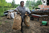 Maria Emilia Martins load two bags of sharcoal. In the village of Pilado in the county of Marinha Grande, sharcoal production goes back to the sixth century, always executed by women, today due to unemployment, men are taking the responsability for this handicraft industry. Sharcoal is used as an alternative  power, most of all to grill.Paulo Cunha/4see