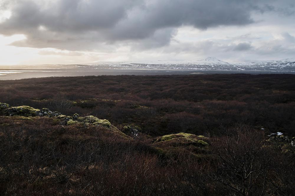 REYKJAVIK 20160402<br /> National park outside Reykajvik.<br /> Foto: Vilhelm Stokstad / Kontinent