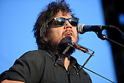 Jeff Tweedy of Wilco performing at LouFest in St. Louis on August 29, 2010.