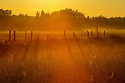 Sunrise on the prairie<br /> Fannystelle<br /> Manitoba<br /> Canada