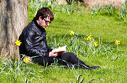 © under license to London News Pictures. 19/03/2011.  A man reads a book in Green Park on a bright sunny spring Saturday following days of persistent rain. Photo credit should read Cliff Hide/LNP.