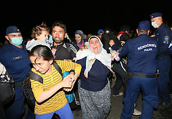© London News Pictures. Migrants clash with police close to the Hungarian and Serbian border town of Roszke, Hungary, September 8 2015. The UN's humanitarian agencies are on the verge of bankruptcy and unable to meet the basic needs of millions of people because of the size of the refugee crisis in the Middle East, Africa and Europe, senior figures within the UN have told the media.   Picture by Paul Hackett /LNP