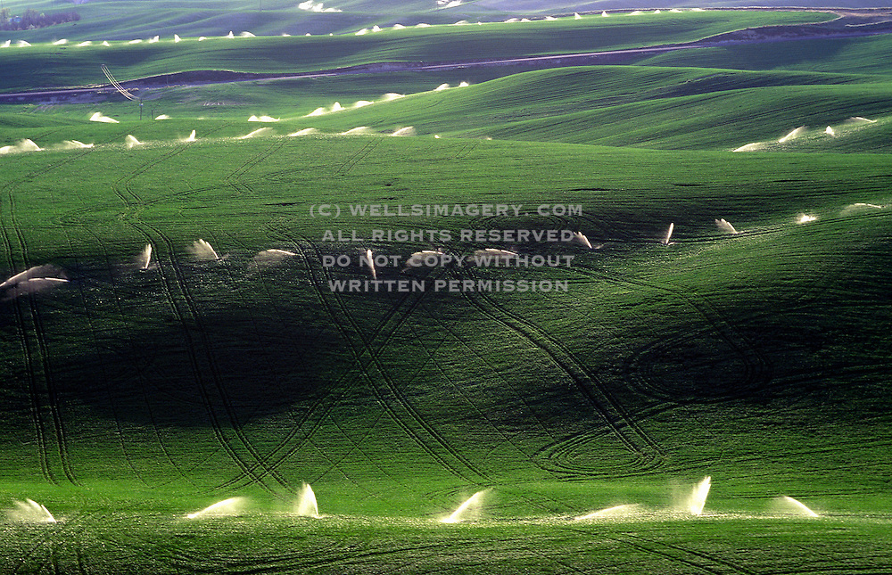 Aerial image of the Palouse wheatfields being irrigated, eastern Washington, Pacific Northwest