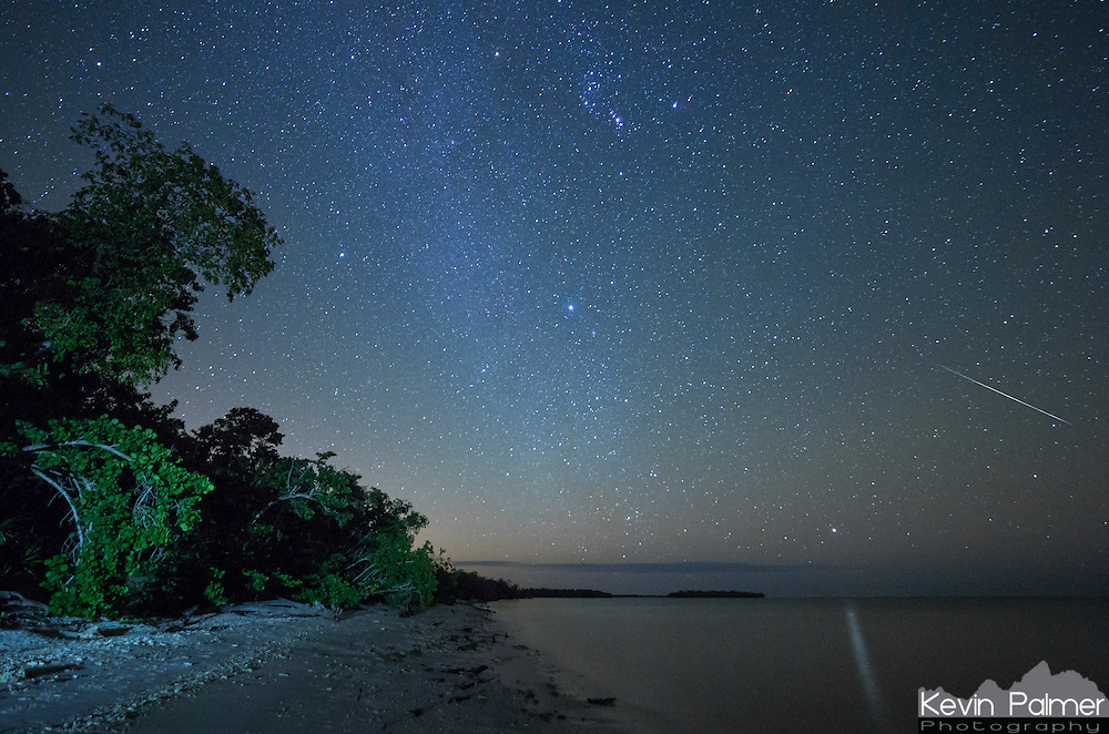 A Geminid meteor streaks across the sky above Picnic Key in Everglades National Park, Florida. The star Canopus is reflected on the water with the brightest star Sirius in the middle of the picture and the constellation Orion above. My flashlight lighting up the trees was actually unintentional. When a raccoon approached me I instinctively shined a light in its direction. The raccoons here are very bold because they have no source of freshwater and attempt to steal from campers.<br />