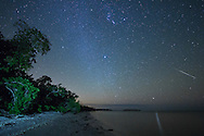 A Geminid meteor streaks across the sky above Picnic Key in Everglades National Park, Florida. The star Canopus is reflected on the water with the brightest star Sirius in the middle of the picture and the constellation Orion above. My flashlight lighting up the trees was actually unintentional. When a raccoon approached me I instinctively shined a light in its direction. The raccoons here are very bold because they have no source of freshwater and attempt to steal from campers.<br /> <br /> Date Taken: 12/13/2014