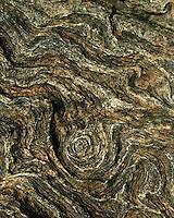 Wood Textures and pattern from driftwood found on Blackbeard Island, Georgia USA Weathered wood images from the driftwood beach on Blackbeard Island, Georgia