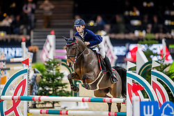 De Plecker Vic, BEL, Boris<br /> Jumping Mechelen 2019<br /> © Hippo Foto - Dirk Caremans<br />  27/12/2019