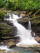 A view of Upper La Mina Falls, El Yunque Falls, Puerto RIco.