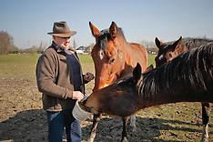 Aerts Karel 2011