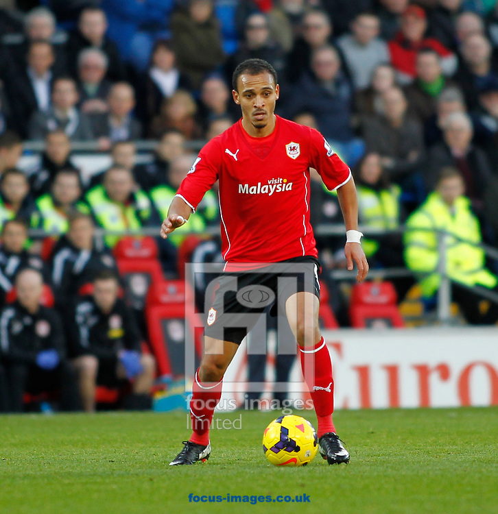 Picture by Mike  Griffiths/Focus Images Ltd +44 7766 223933<br /> 11/01/2014<br /> Peter Odemwingie of Cardiff City against West Ham United during the Barclays Premier League match at the Cardiff City Stadium, Cardiff.