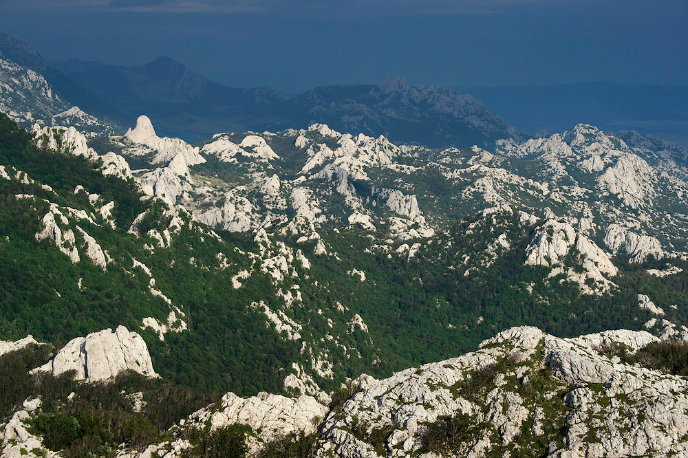 Lagosta hunting concession, Velebit mountains Nature Park, Croatia