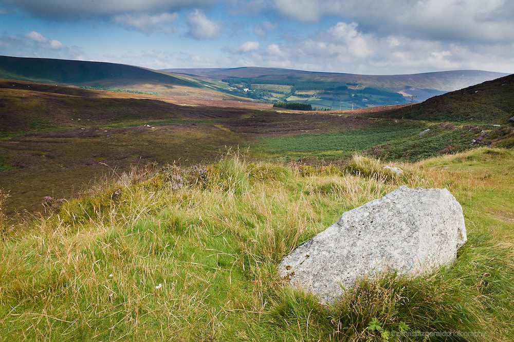 In a mountain pass, high in the Wicklow Mountains in Ireland, a sole rock disrupts the blowing grass amid the rolling fields of heather.