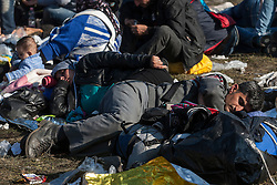 Š Licensed to London News Pictures. 24/10/2015. Rigonce, Slovenia. Migrants are waiting to be escorted to the camps in Dobovo and Brezice, Slovenia at the Slovenian Croatian border.  Photo: Marko Vanovsek/LNP