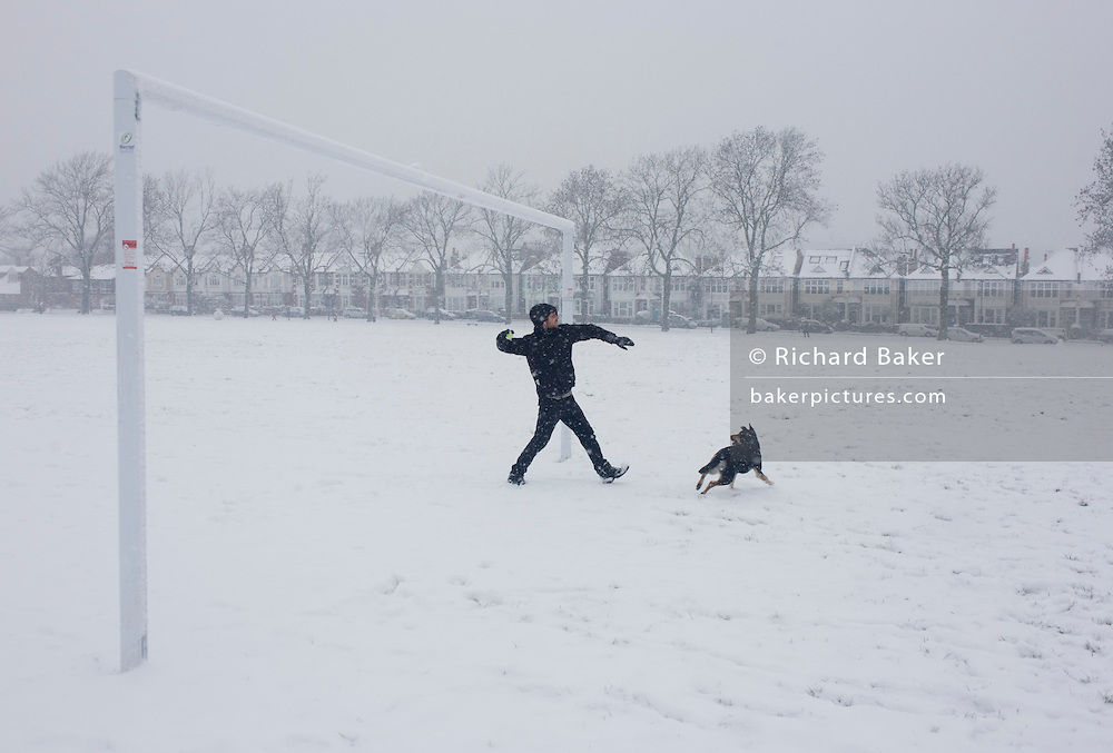 Pet owner throws tennis ball for Alsation dog during snowy day in south London park.