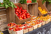 Locally grown organic tomatoes on display at the weekly farmers market in Marion Square June 28, 2014 in Charleston, SC.