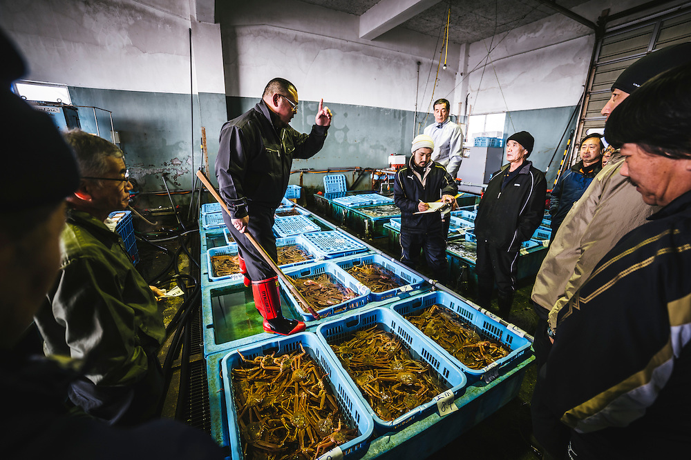 Crab auction at the harbour in Toyo-ura, Hokkaido
