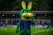 The Rochdale FC mascot during the EFL Sky Bet League 1 match between Rochdale and Sunderland at the Crown Oil Arena, Rochdale, England on 20 August 2019.