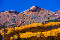 Fall color, Kebler Pass, near Crested Butte, Colorado USA.