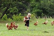 A small child plays with her farms animals in Mississippi.