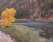Idaho: Salmon River