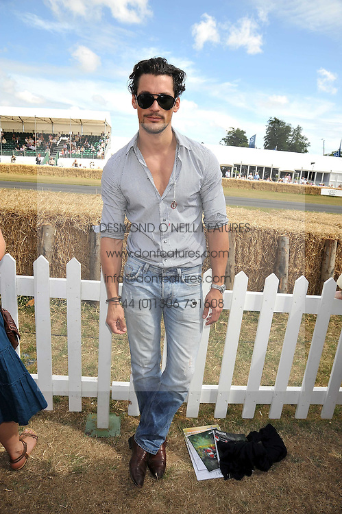 DAVID GANDY at a luncheon hosted by Cartier for their sponsorship of the Style et Luxe part of the Goodwood Festival of Speed at Goodwood House, West Sussex on 5th July 2009.
