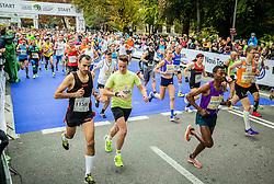 Runners at start during 20th Ljubljana Marathon 2015, on October 25, 2015 in Ljubljana, Slovenia. Photo by Vid Ponikvar / Sportida