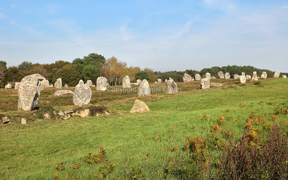 Menec standing stones, 11 converging alignments of 1050 menhirs stretching for 1,165x100m, near the village of Carnac, Morbihan, Brittany, France. The alignments are roughly parallel with evenly spaced megaliths which are larger at the Western end and smaller at the Eastern end. The Carnac stones were erected in the Neolithic period by pre-Celtic breton peoples. Picture by Manuel Cohen