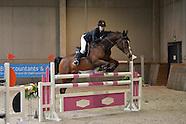 2015-03-lrv-_nationaal-paard
