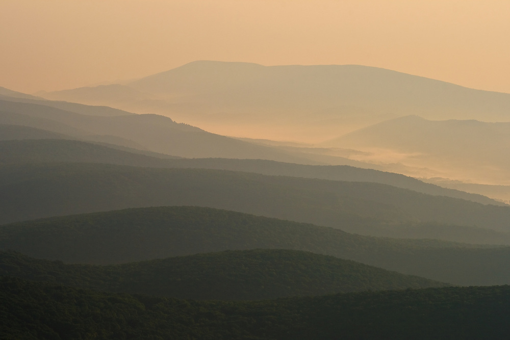The view northeast from Bear Rocks Preserve in Dolly Sods, West Virginia.  The early morning mist and sunrise light emphasize the folded topography typical of this area of West Virginia.