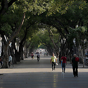 Cubans walk the Paseo del Prado Centro Habana and Old Havana, Cuba.