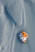 Colorful rock in glacial silt of the Delta River Alaska