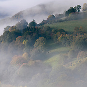 Autumn landscape with mist and view colors in the trees