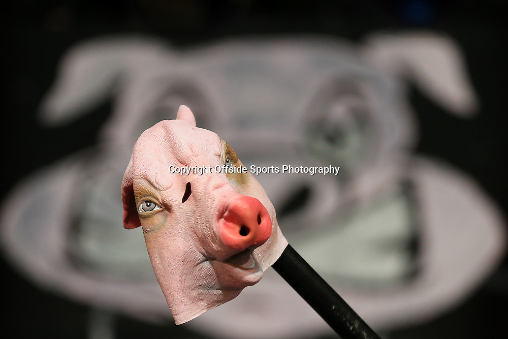 14 February 2015 - The FA Cup Fifth Round - Crystal Palace v Liverpool - Crystal Palace fans hold a pole with a fake pigs head upon it on protest at 'Premier League greed' - Photo: Marc Atkins / Offside.