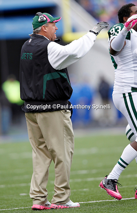 New York Jets Head Coach Rex Ryan congratulates his players after the defense recovers a third quarter fumble during a NFL week 4 football game against the Buffalo Bills on Sunday, October 3, 2010 in Orchard Park, New York. The Jets won the game 38-14. (©Paul Anthony Spinelli)