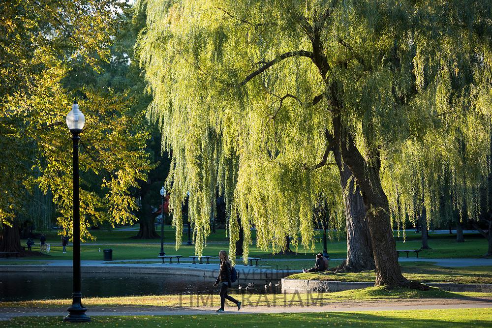 People enjoying the Public Garden in Boston, Massachusetts, USA