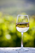 A single glass of white wine sits on a ledge next to a vineyard near Franschhoek, South Africa. The vineyard and surrounding countryside are reflected in the glass.