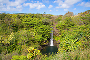 Kamae'e Falls, World Botanical Gardens & Waterfalls.at Botanical World, Hamakua Coast, Big Island of Hawaii